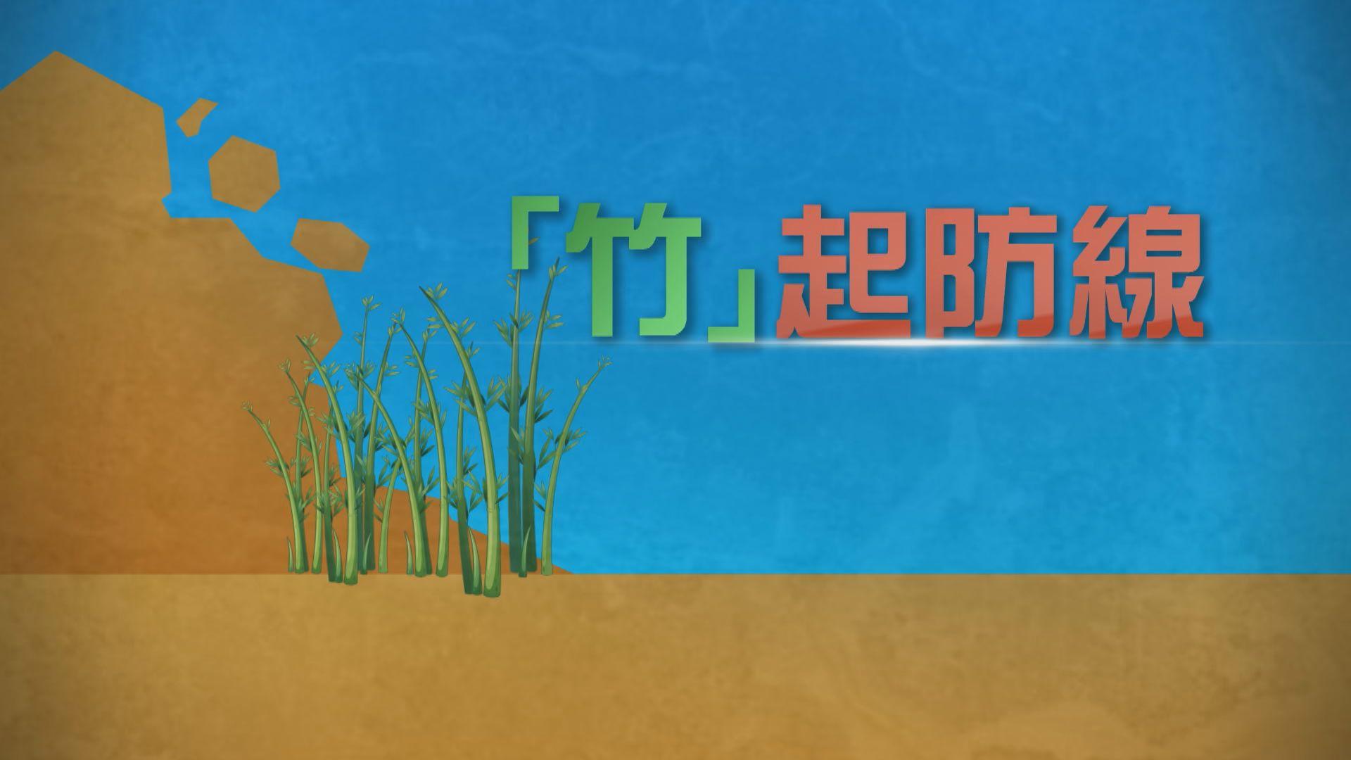 【新聞智庫】「竹」起防線