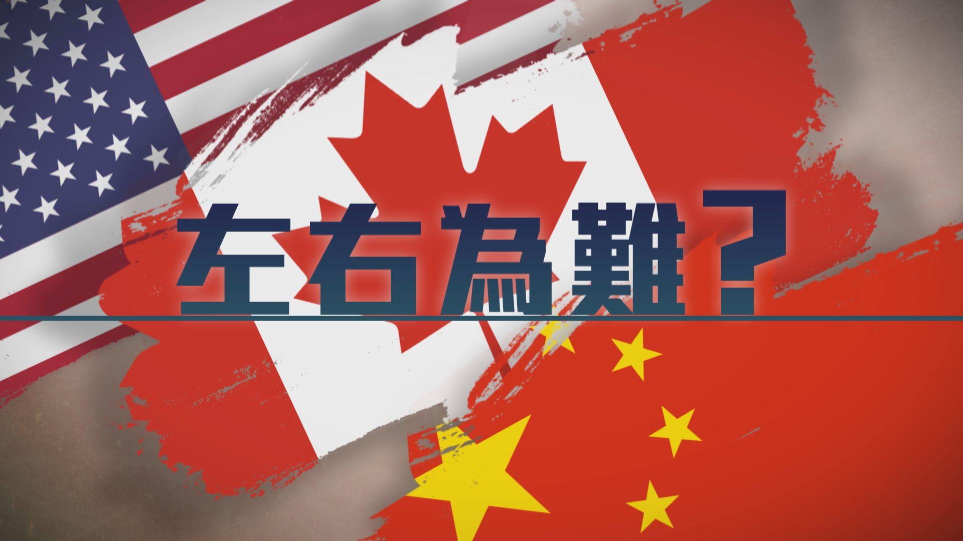 【新聞智庫】加拿大左右為難?