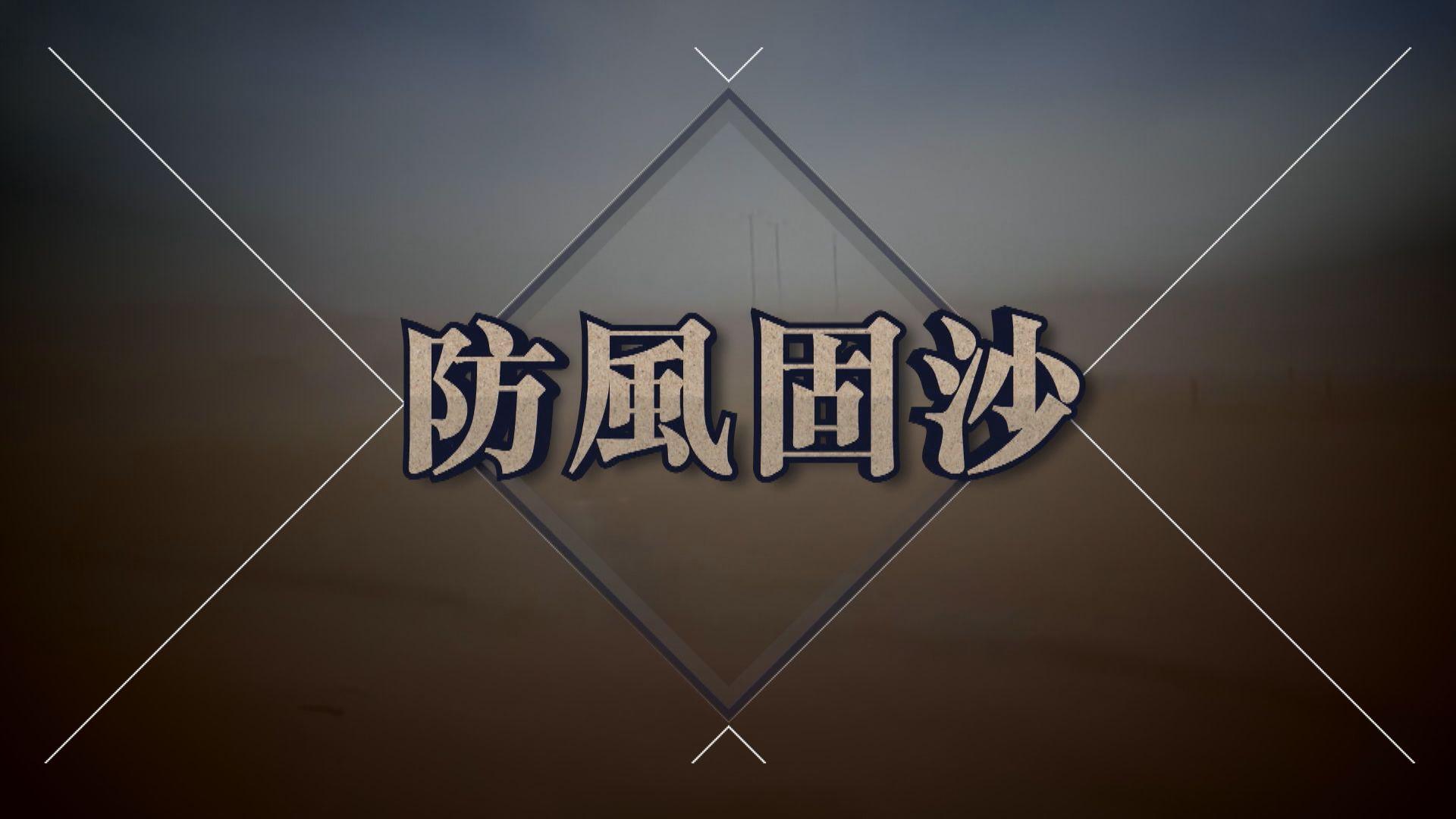 【新聞智庫】防風固沙
