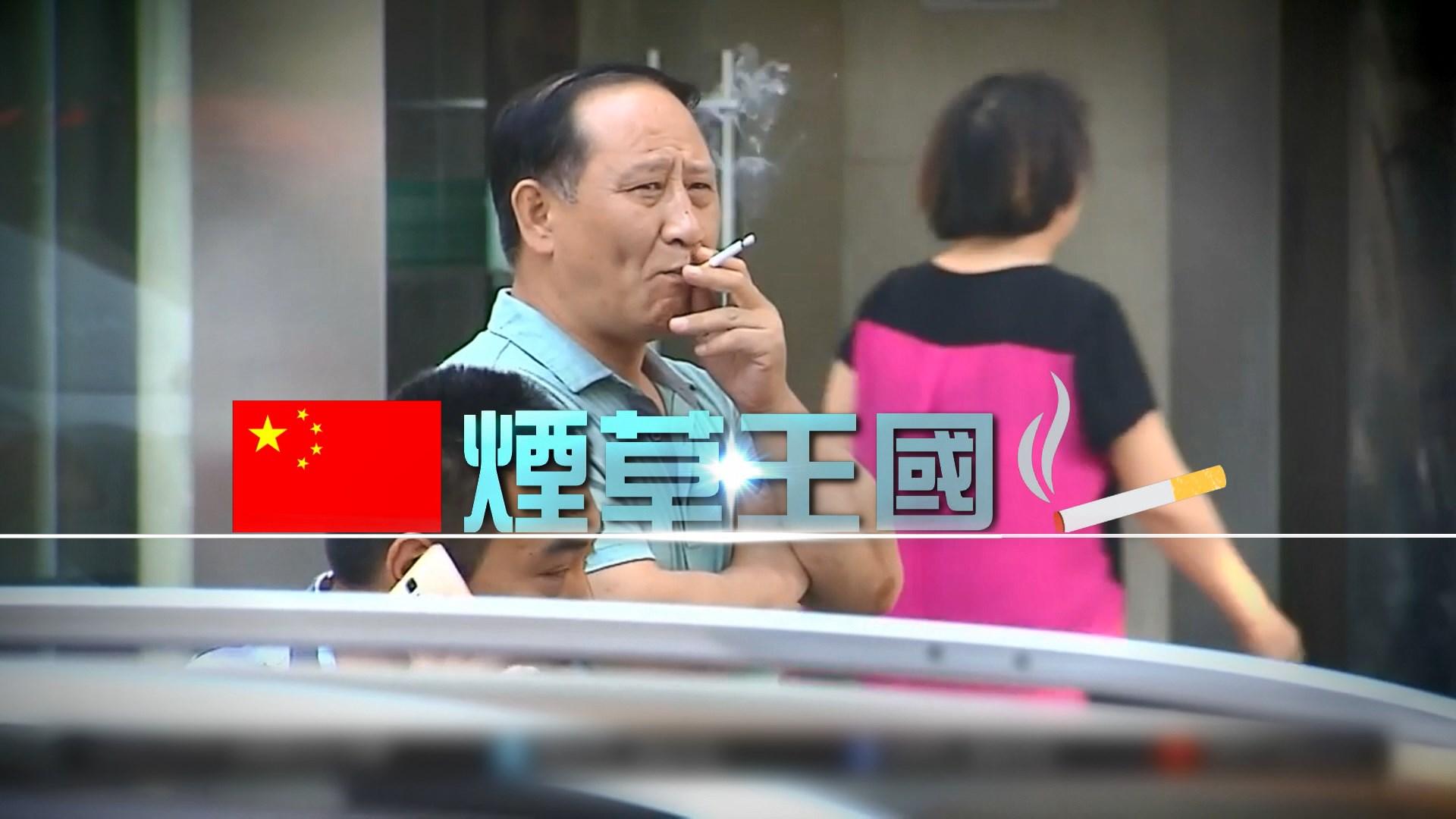 【新聞智庫】煙草王國