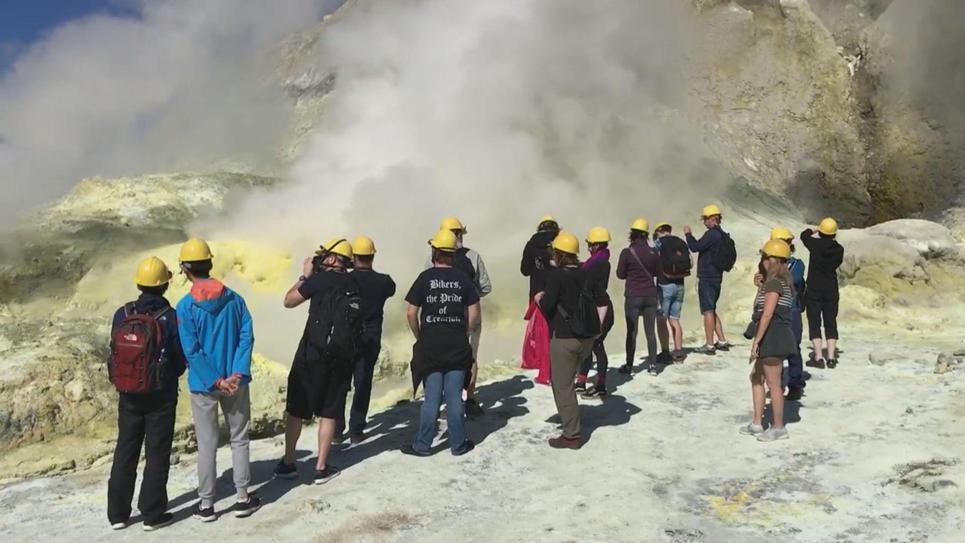 新西蘭懷特島火山每年接待逾萬遊客