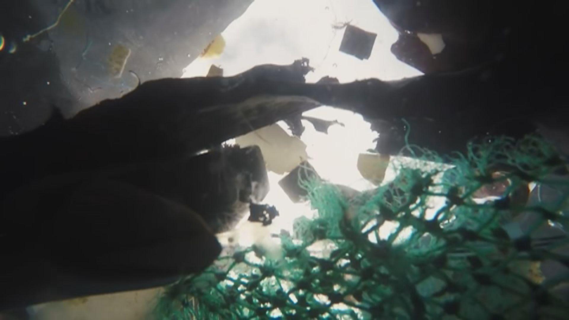 太平洋垃圾帶有近八萬噸垃圾漂浮