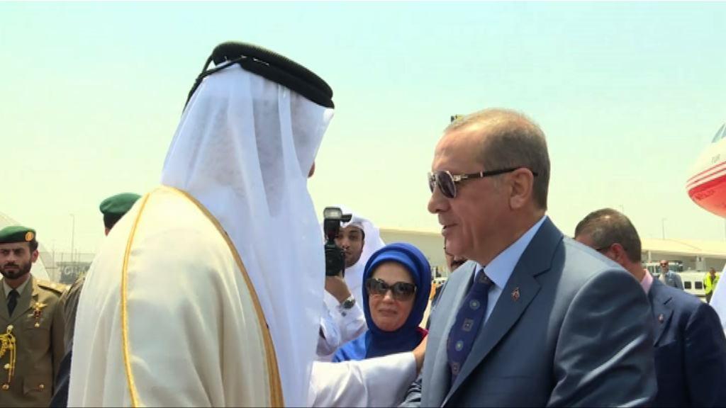 土耳其總統斡旋卡塔爾斷交風波未有成果