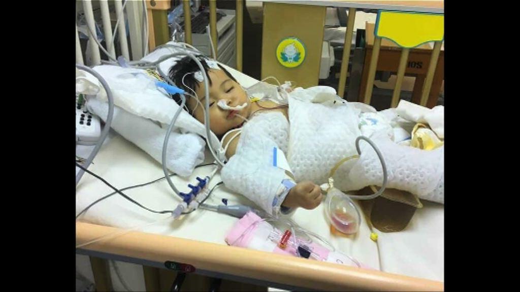 女嬰瑪麗手術後昏迷情況仍嚴重