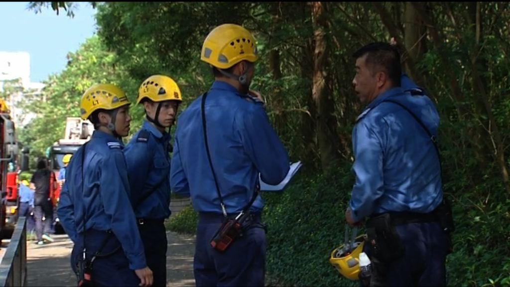 消防早上尋回行山失蹤男子