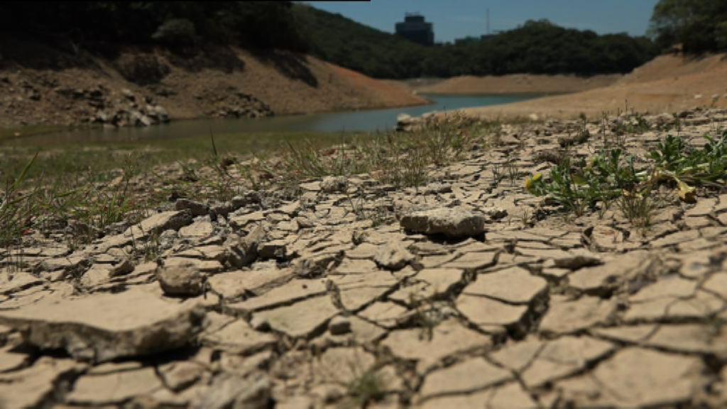 天氣持續酷熱 水塘總存水量跌10個百分點