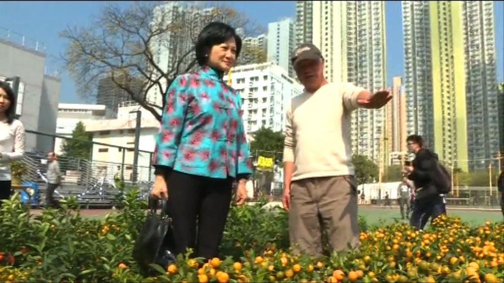 葉劉淑儀:部分泛民拒絕會面