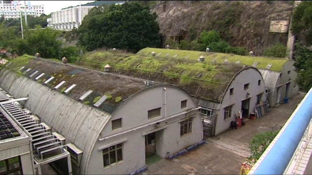 中大加快移除校內鐵皮屋屋頂植物