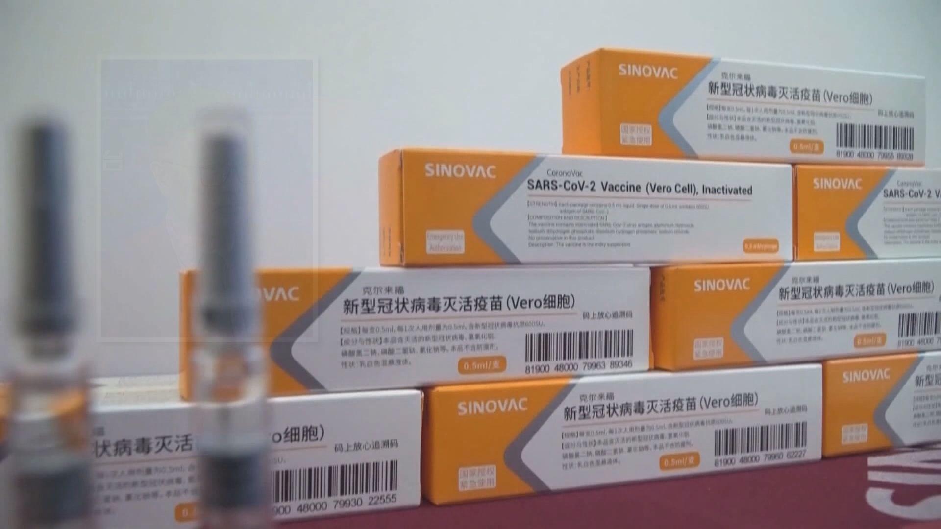 許樹昌:科興疫苗有效率達七成八 保護率頗理想