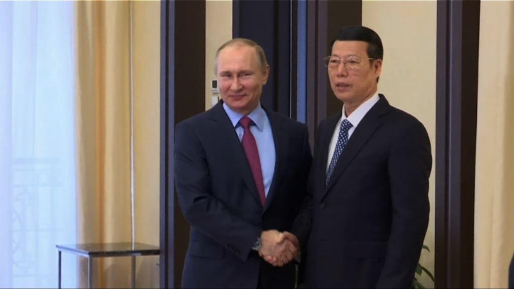 張高麗訪俄與普京舉行會談