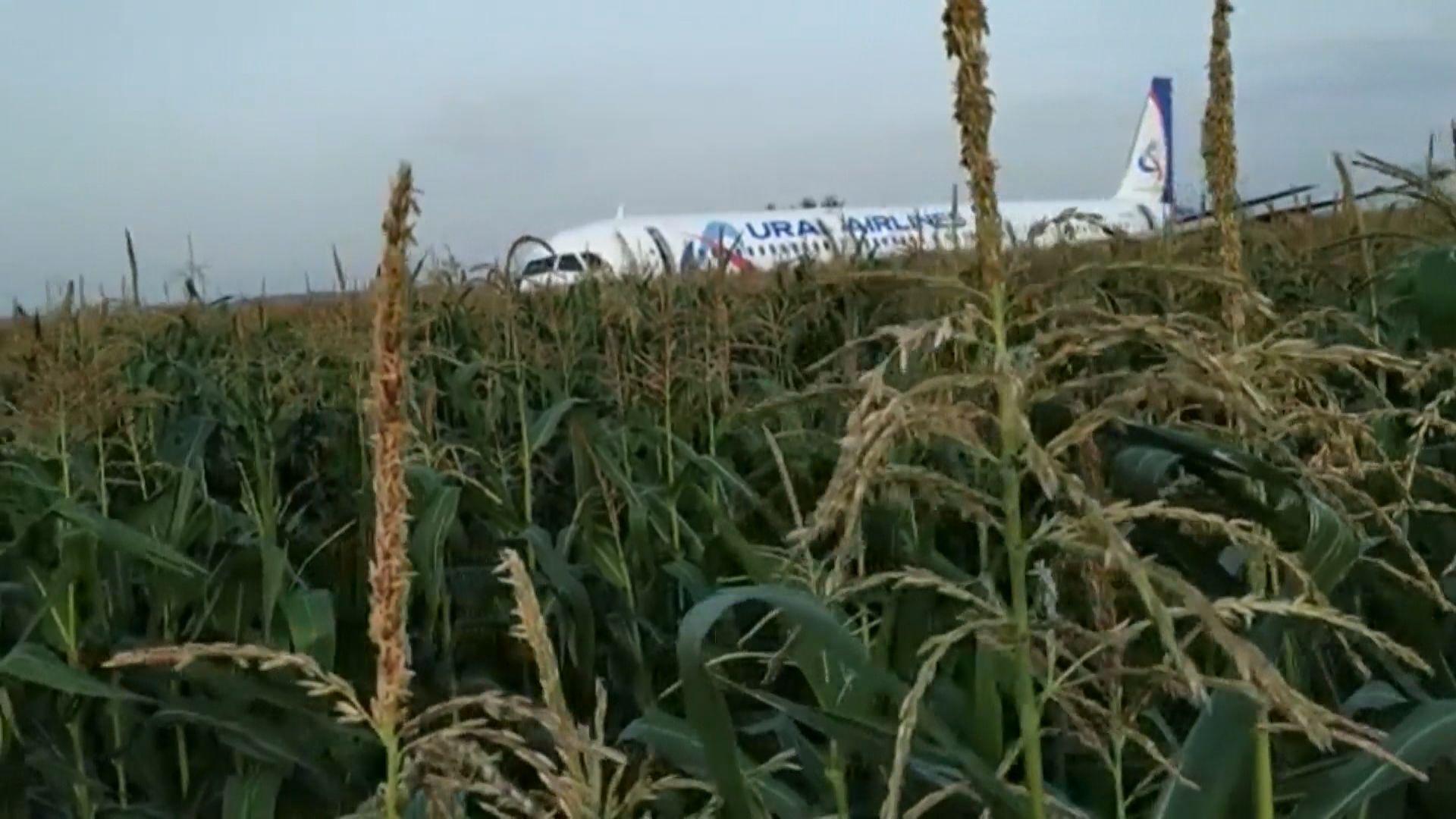 俄羅斯客機緊急降落莫斯科郊區全部人生還
