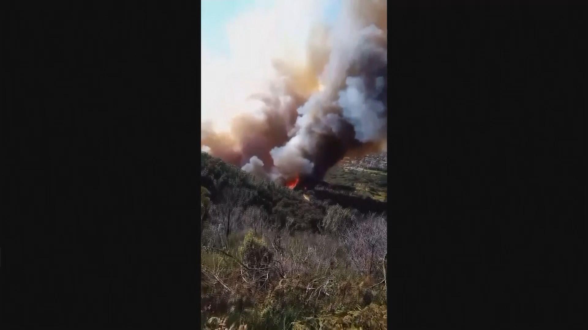 南非開普敦桌山國家公園發生山火