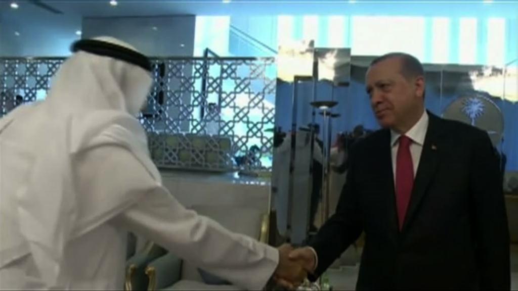 土總統訪中東國家斡旋斷交風波