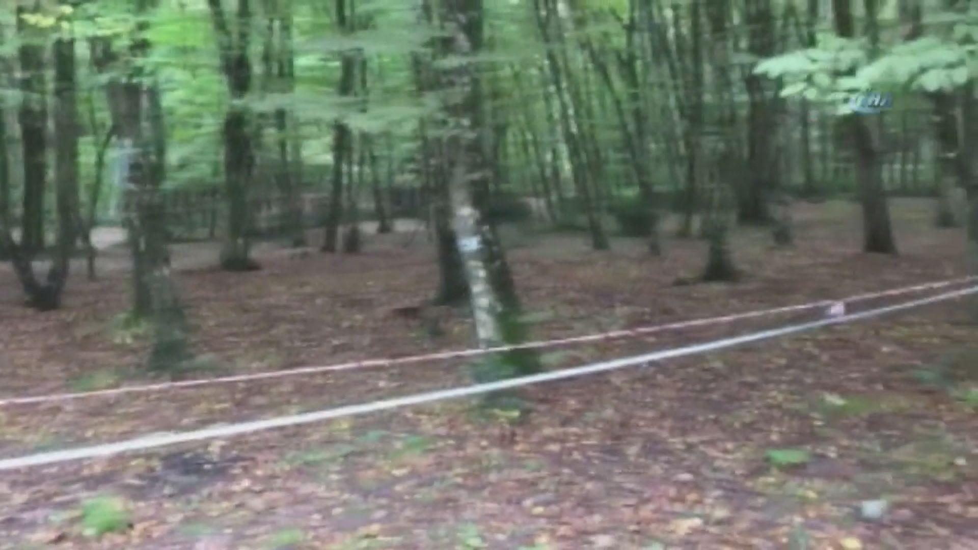 土耳其調查人員找尋卡舒吉棄屍地點