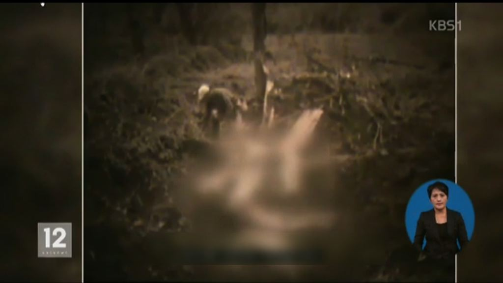 日軍在華屠殺慰安婦片段首度公開