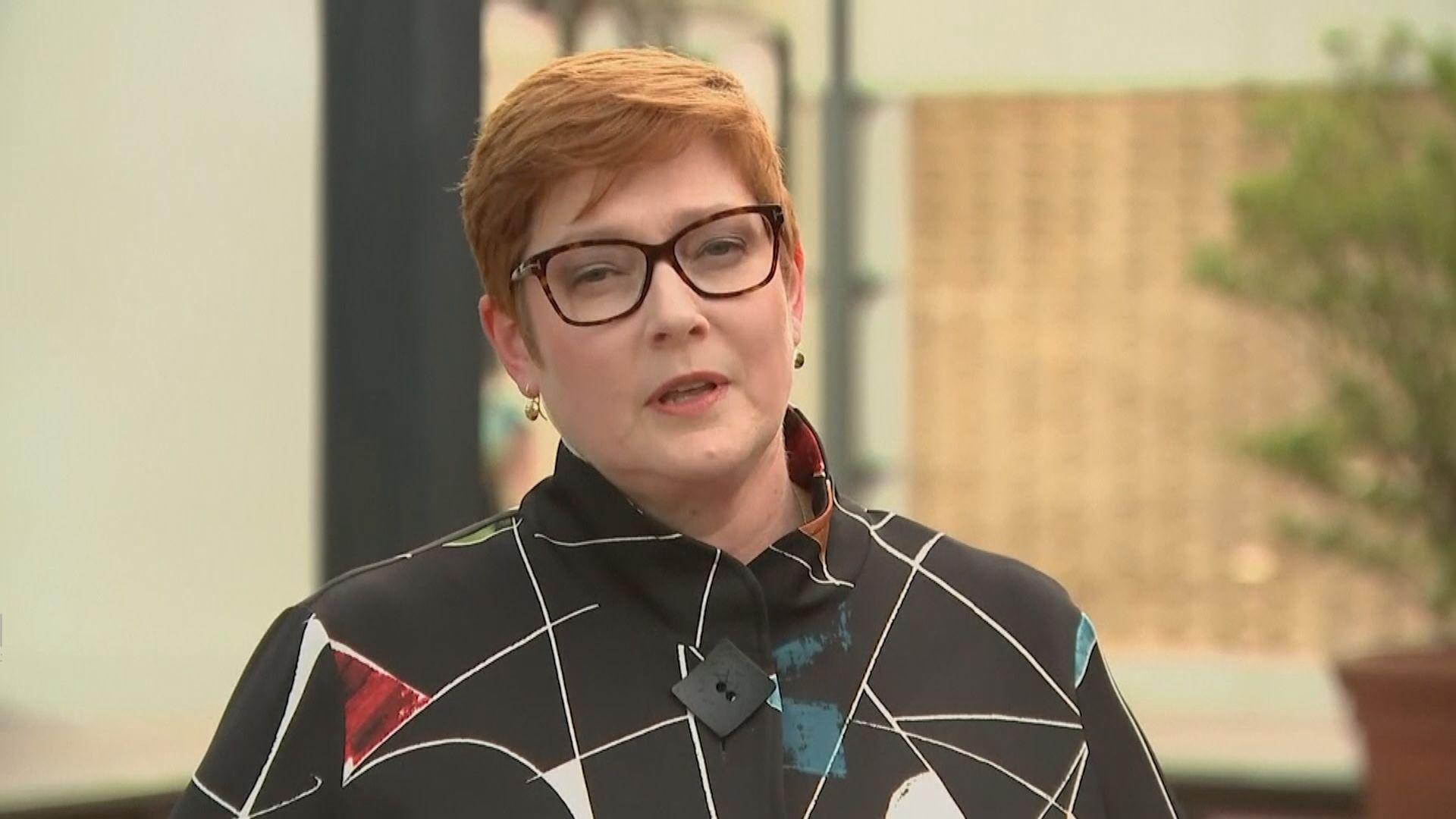 澳洲外長:支持緬甸去年選舉結果 要求釋放昂山等人