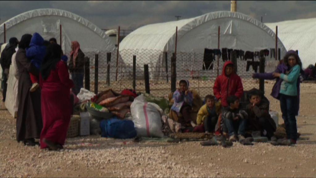 俄羅斯空襲阿勒頗製造5萬難民