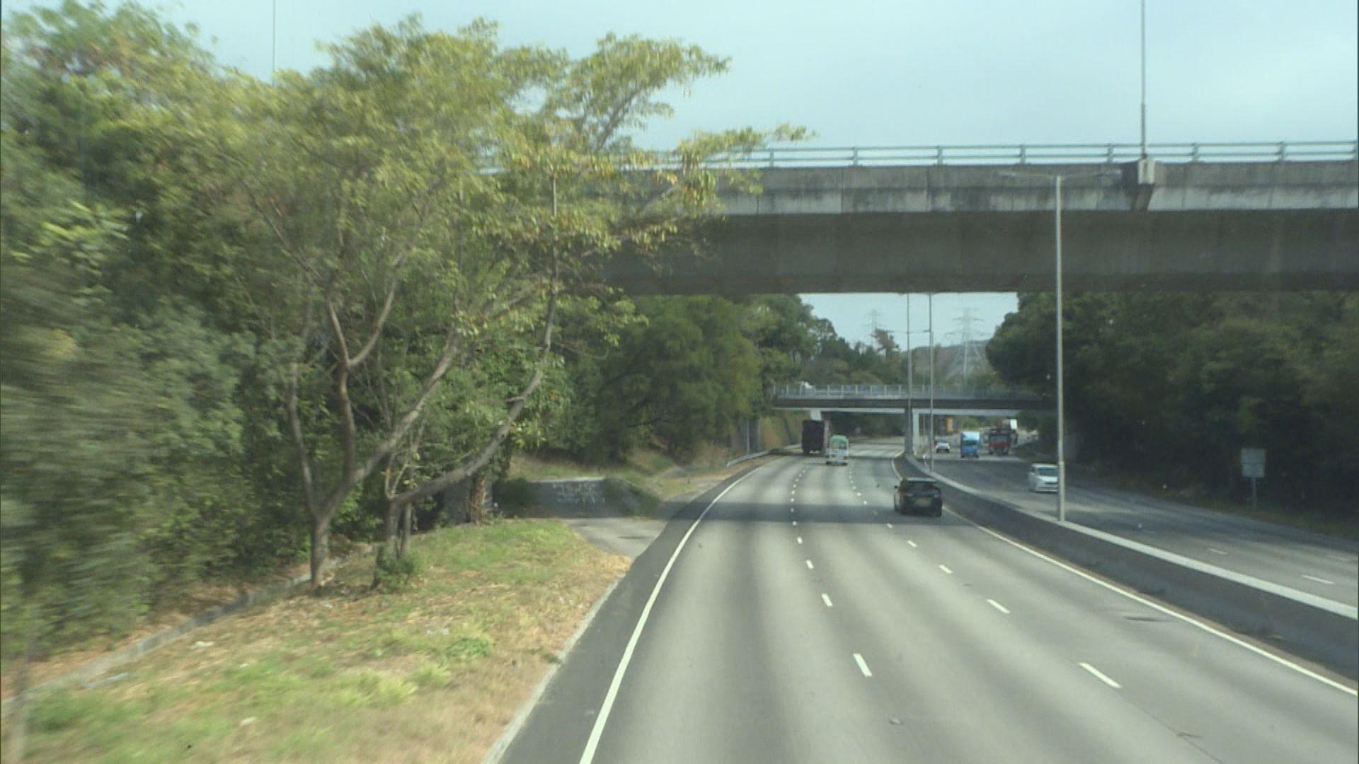 粉嶺公路未見大樹幹樹丫伸出行車線