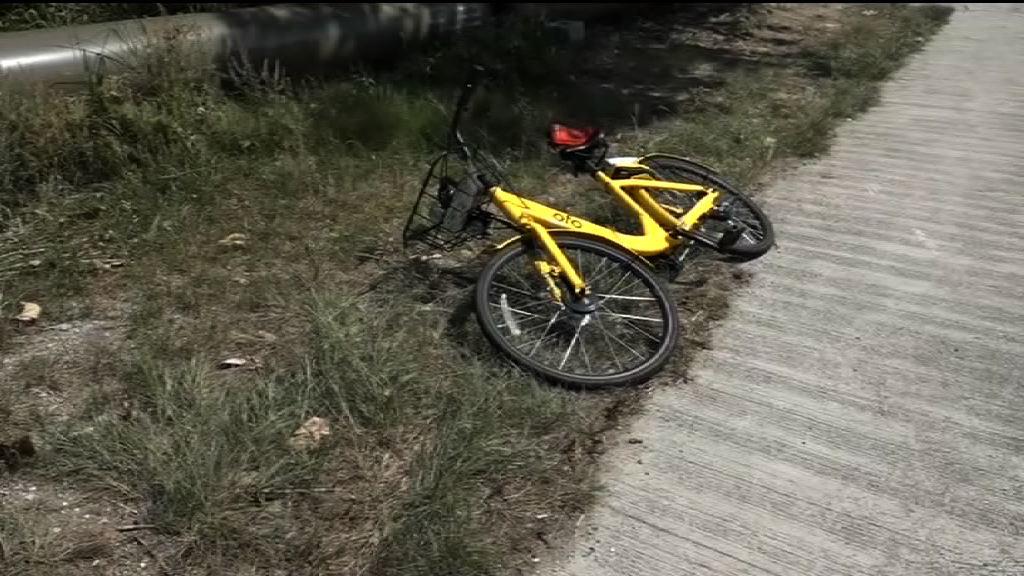 單車與的士東涌相撞 的士司機涉危駕被捕