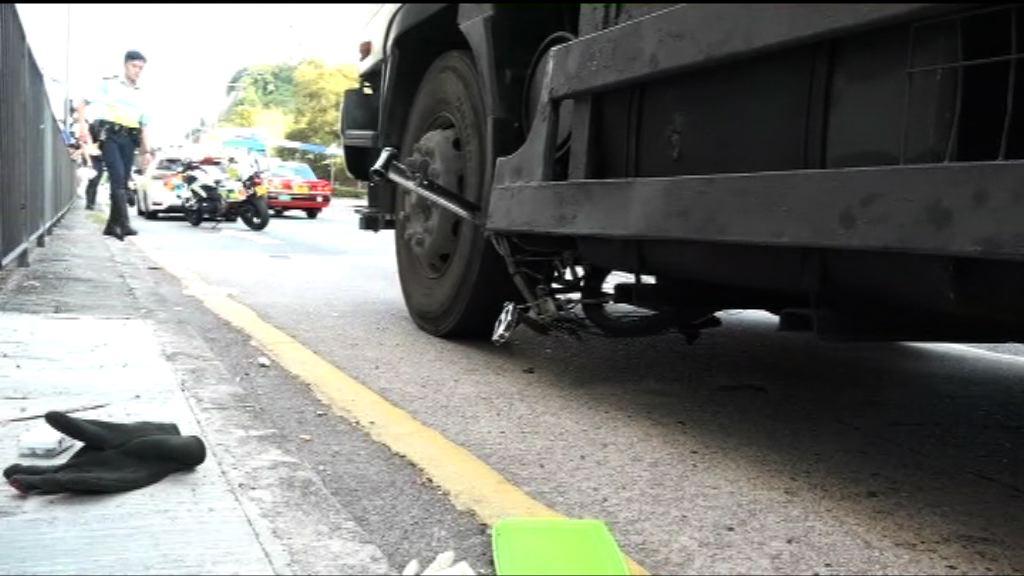 青衣踩單車男子遭貨車撞斃