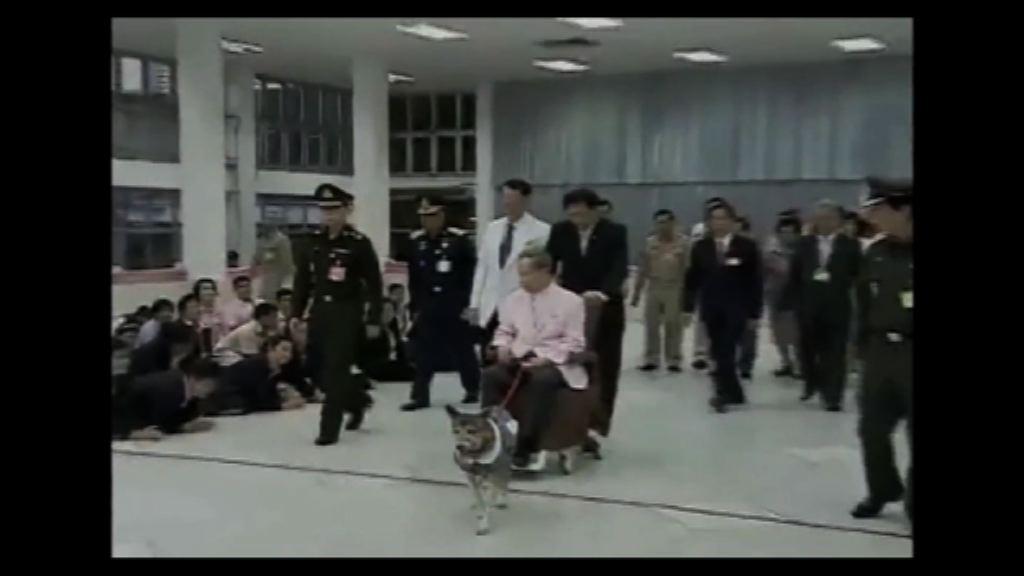 泰王普密蓬愛犬病逝