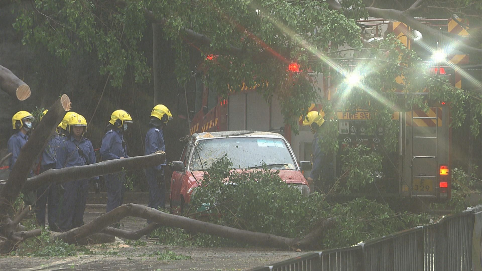 香港仔大道有大樹倒塌壓毀兩輛的士 無人傷