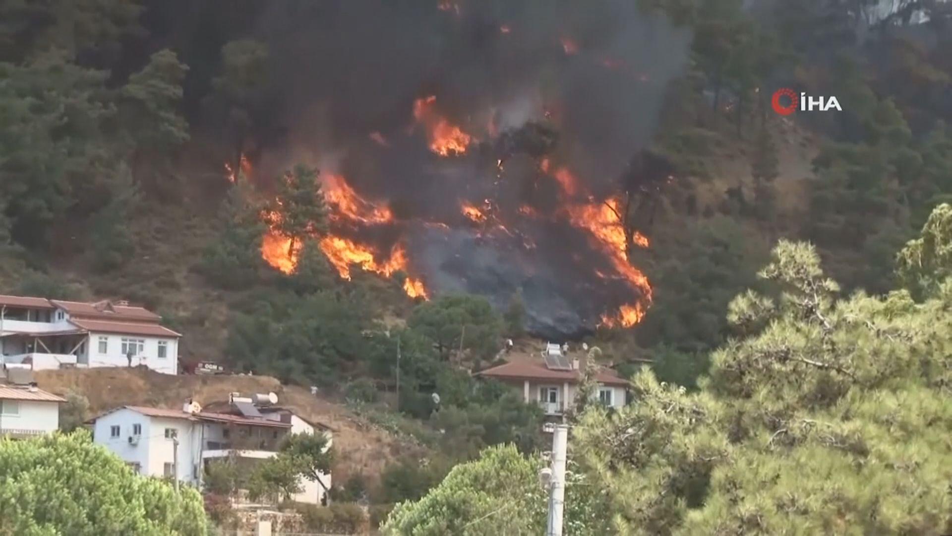 土耳其南部山火持續 死亡人數增至8人