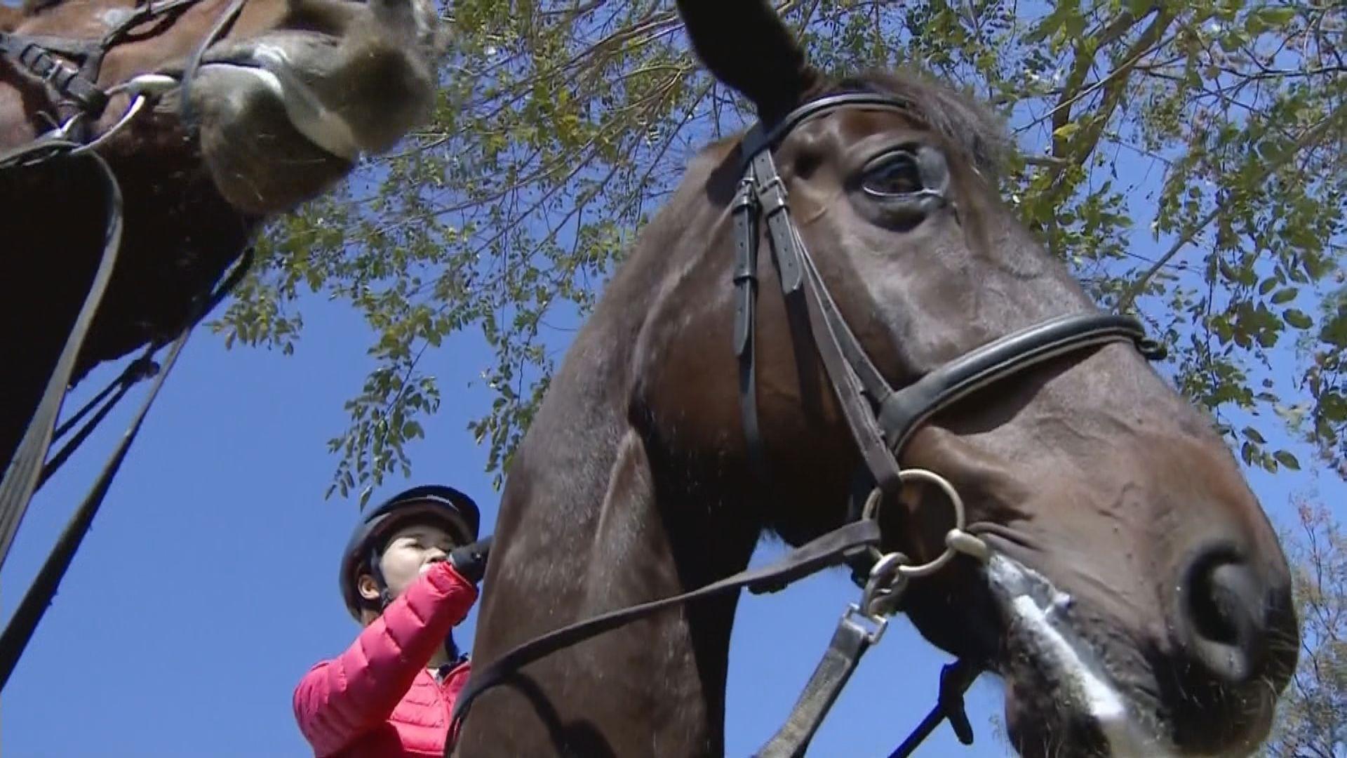 韓國瑜擬改建煉油廠發展賽馬產業