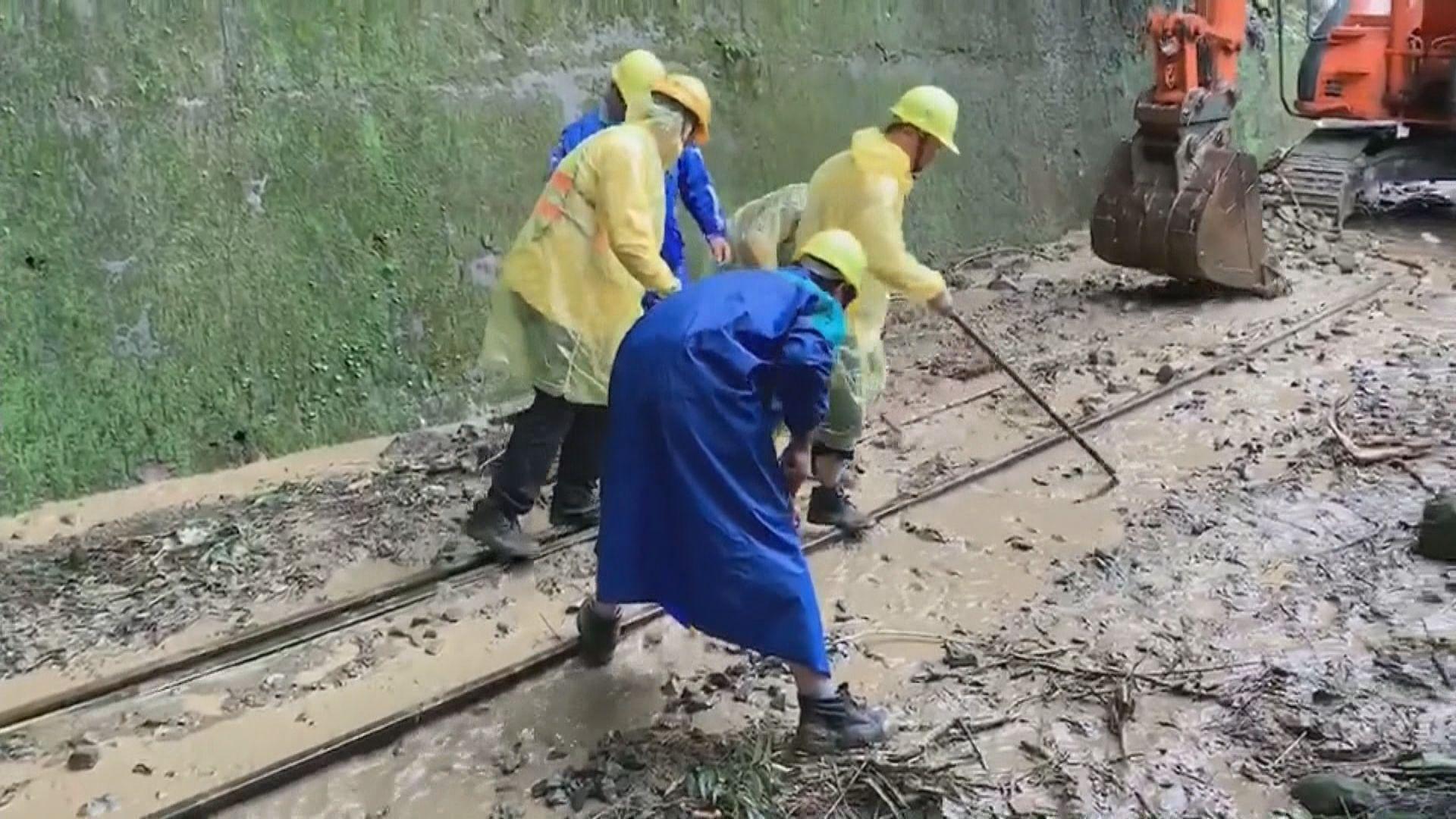 台灣阿里山森林鐵路部分路段停駛四天維修