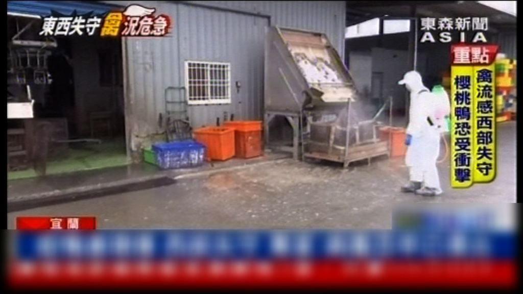 台灣嘉義縣出現H5N6禽流感疫情