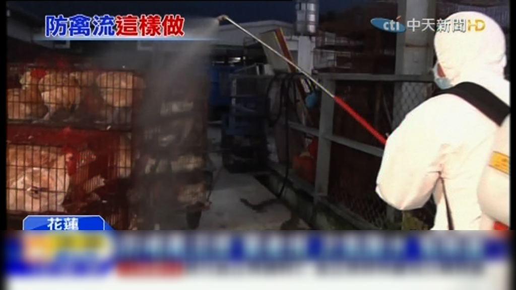 台灣實施家禽禁宰禁運令七天