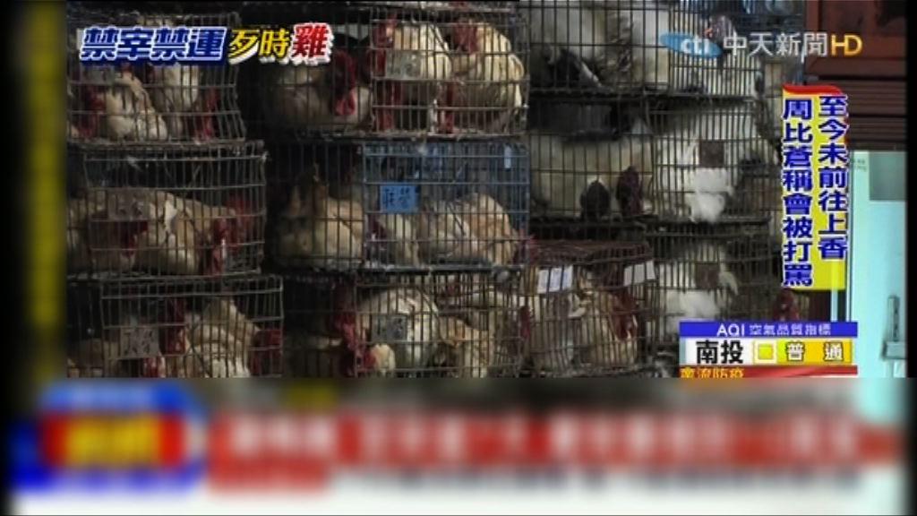 台憂禽流感 禁宰禁運家禽七天歷來最長時間