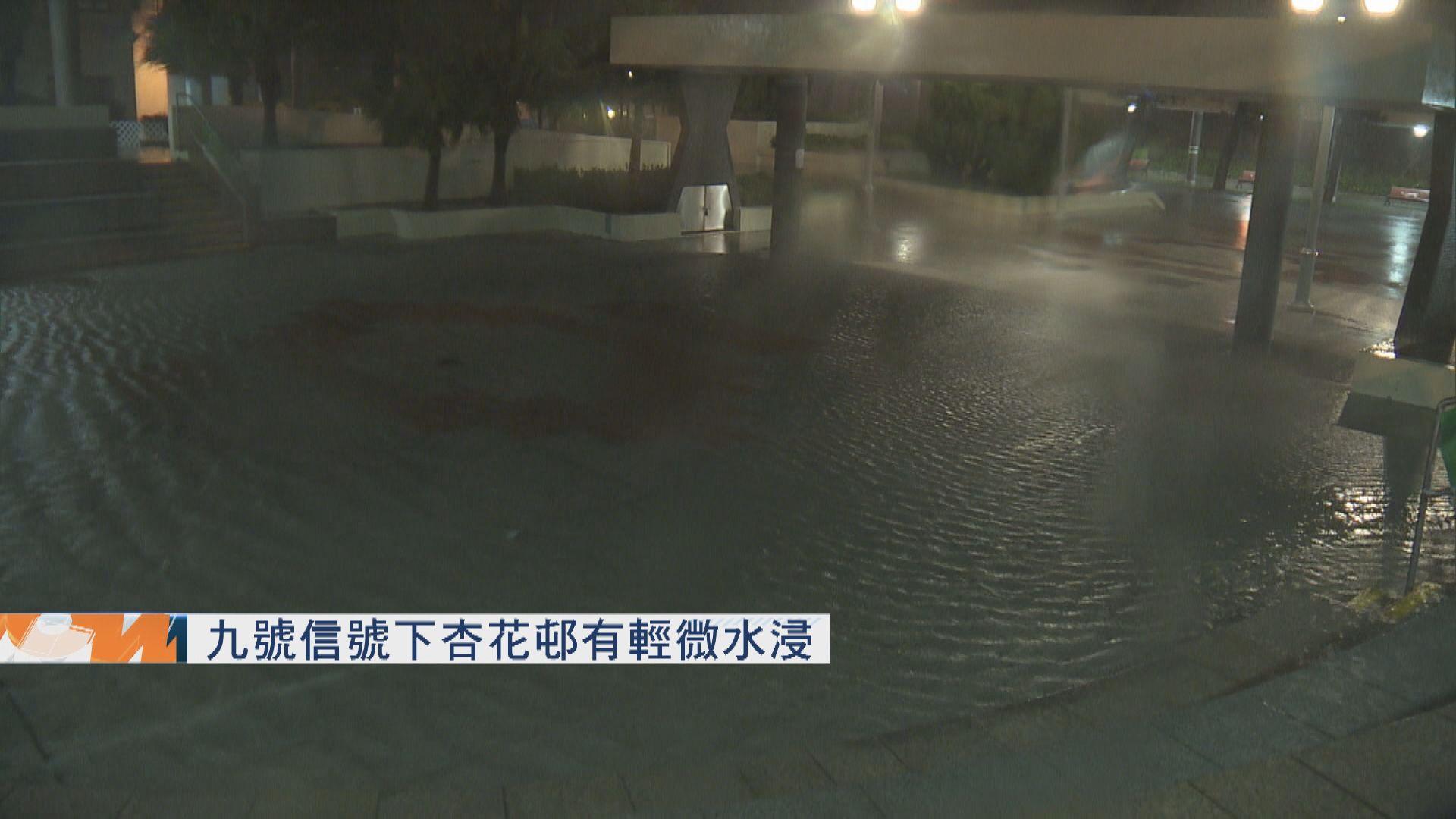 【海高斯襲港】九號信號下杏花邨有輕微水浸