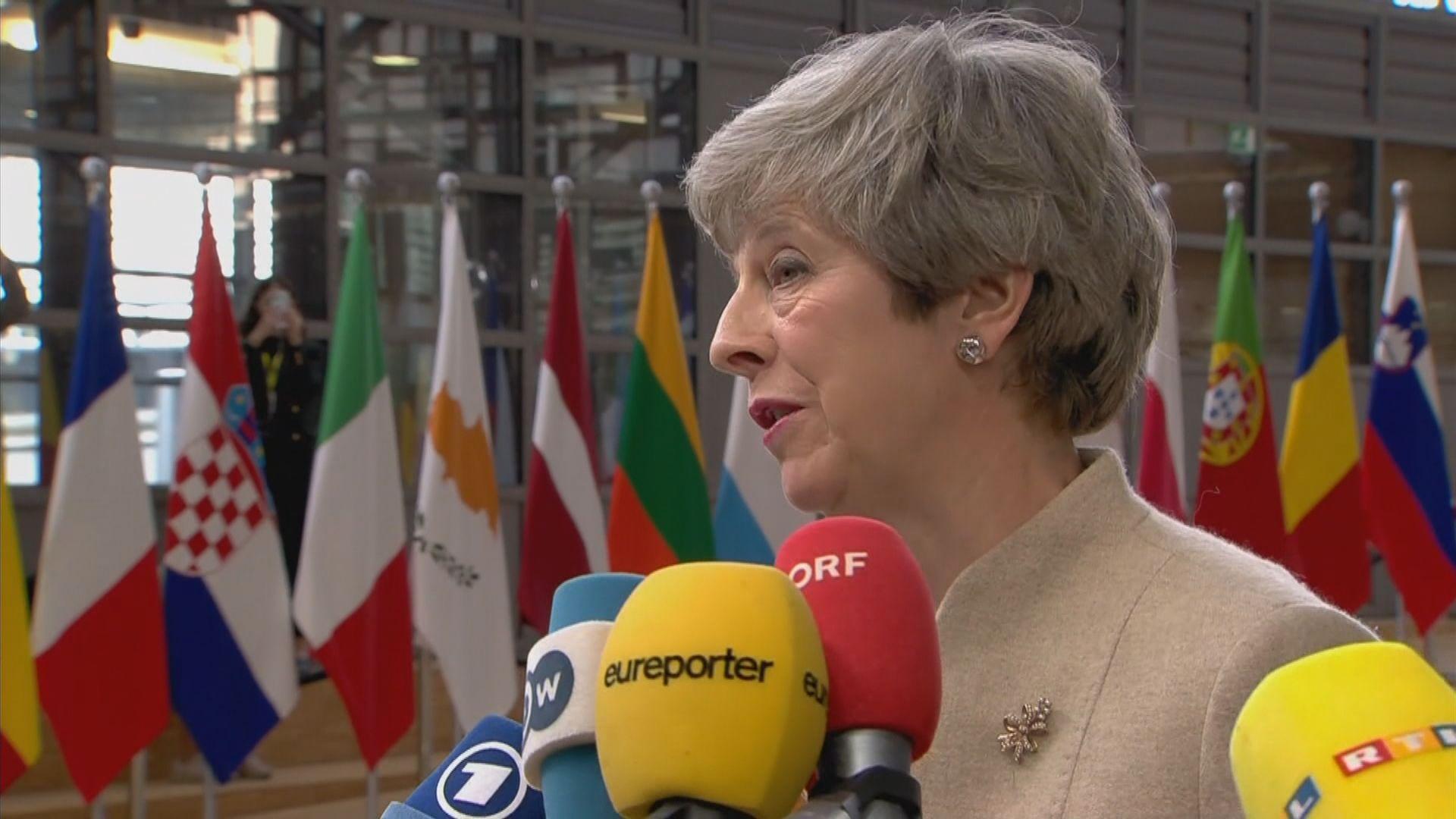 文翠珊遺憾未能落實脫歐籲作出妥協