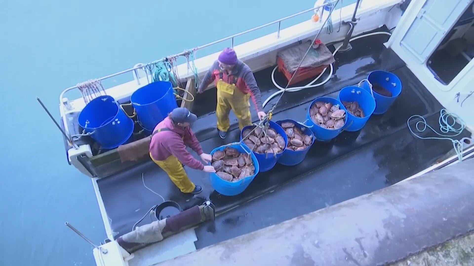 據報英方同意在捕魚權讓步 打破脫歐貿談僵局