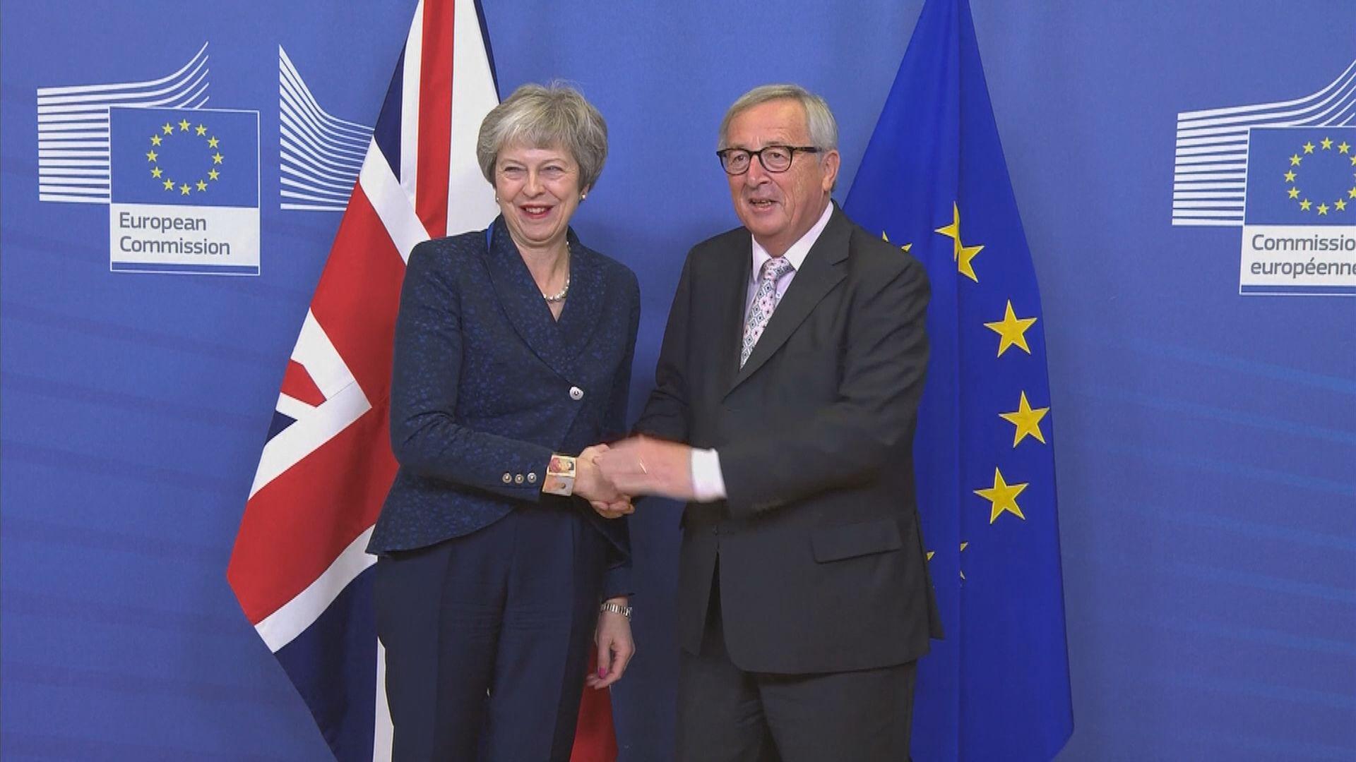 分析:文翠珊與歐盟進行「懦夫博奕」