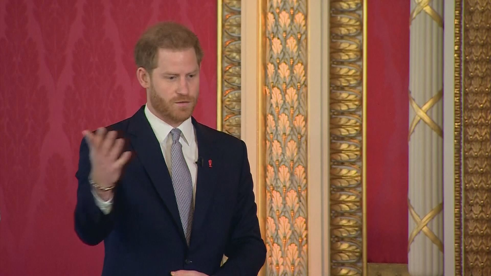 哈里王子據報已返抵英國正在家居隔離