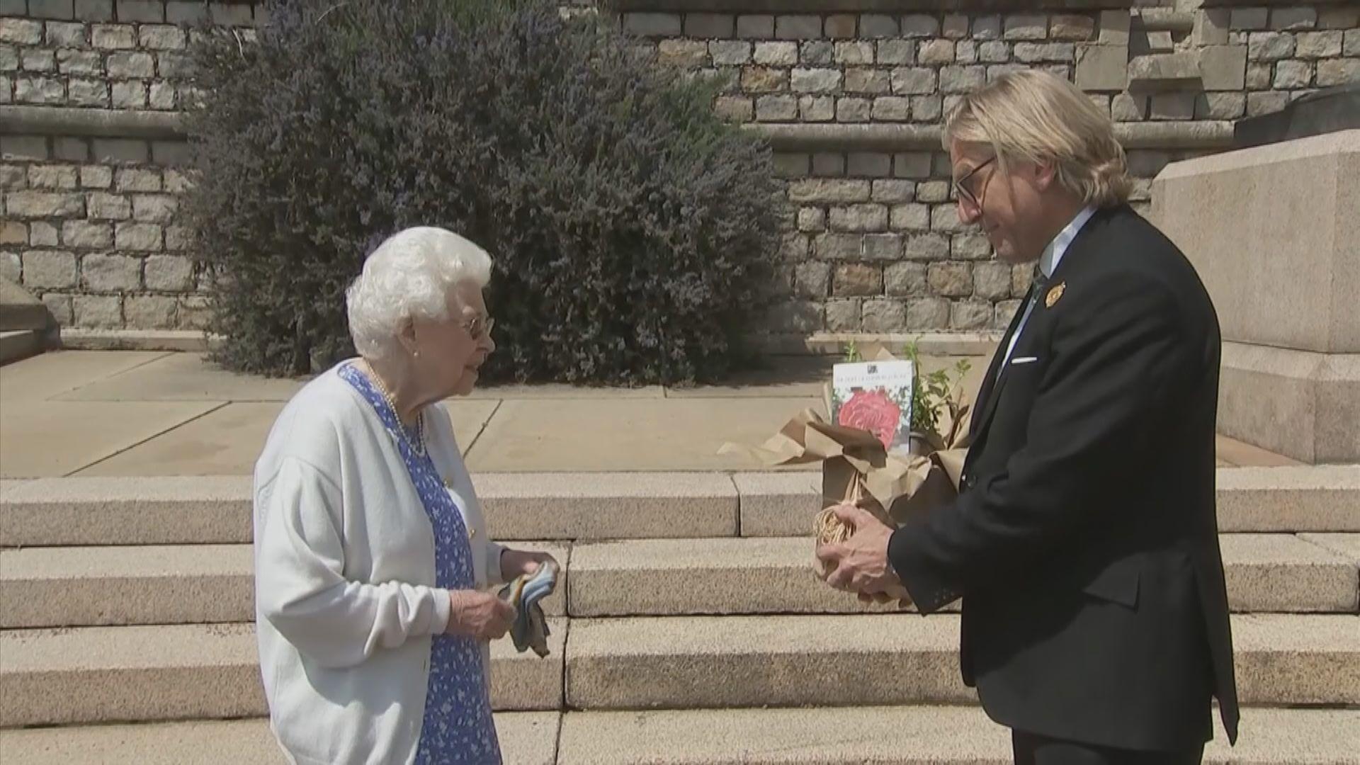 英女王獲贈新品種玫瑰紀念菲臘親王百歲冥壽