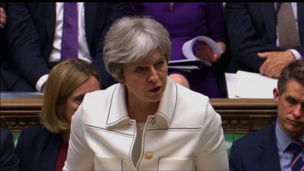 文翠珊出席國會辯論空襲敘利亞
