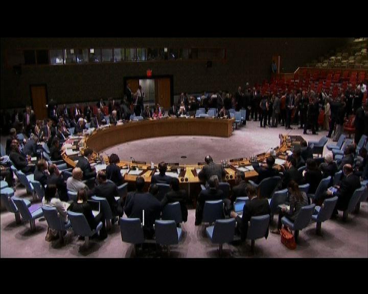 聯合國安理會商討烏克蘭局勢