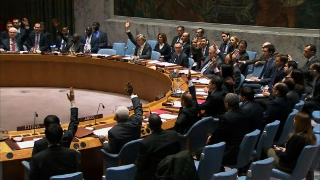 安理會通過支持敘利亞停火協議