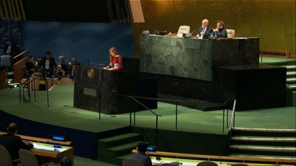 聯合國通過動議要求敘利亞停火