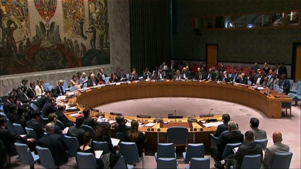 中俄否決安理會方案 敘軍涉用化武逃過制裁