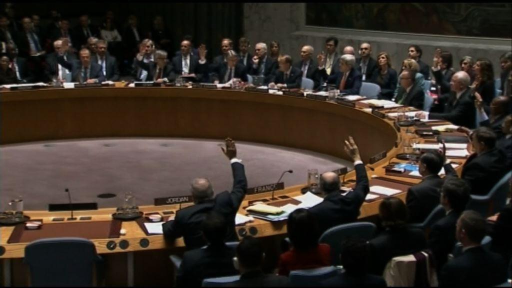 安理會通過敘利亞和平路線圖