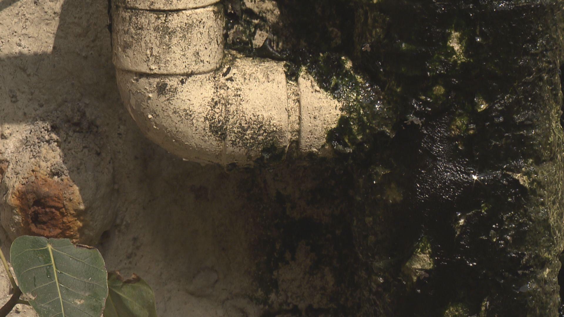 市建局舊樓渠管維修資助計劃明日起接受申請