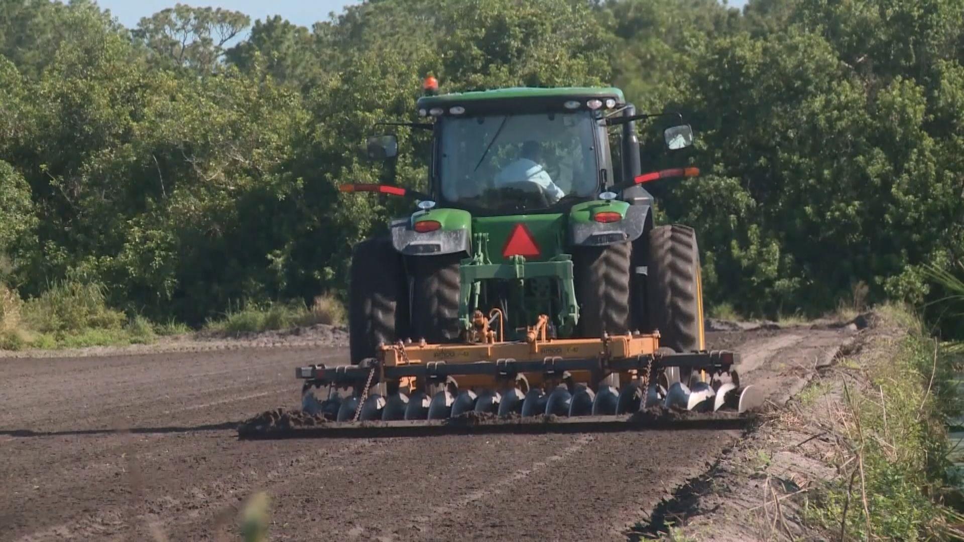 對華徵稅重創美國農業州份經濟