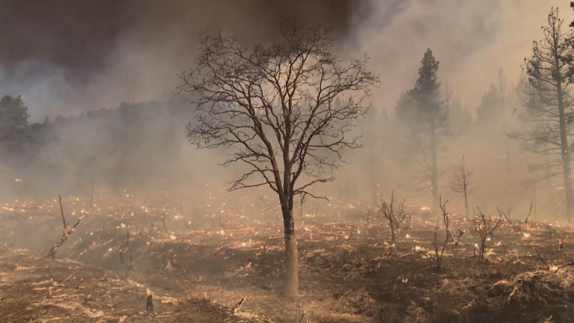 新一輪熱浪侵襲美國西部 加州山火持續