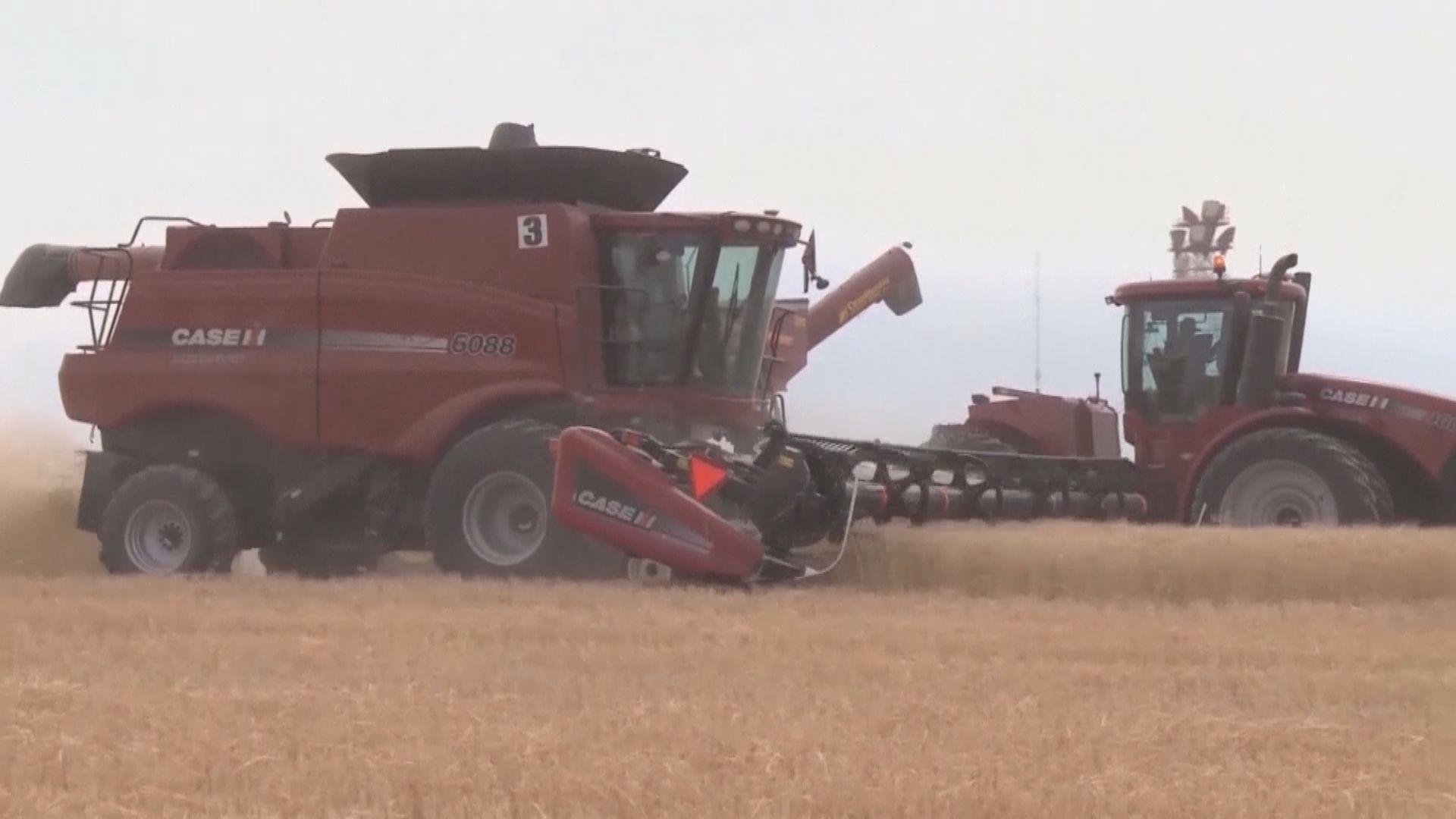 特朗普指墨西哥將買大量美國農產品