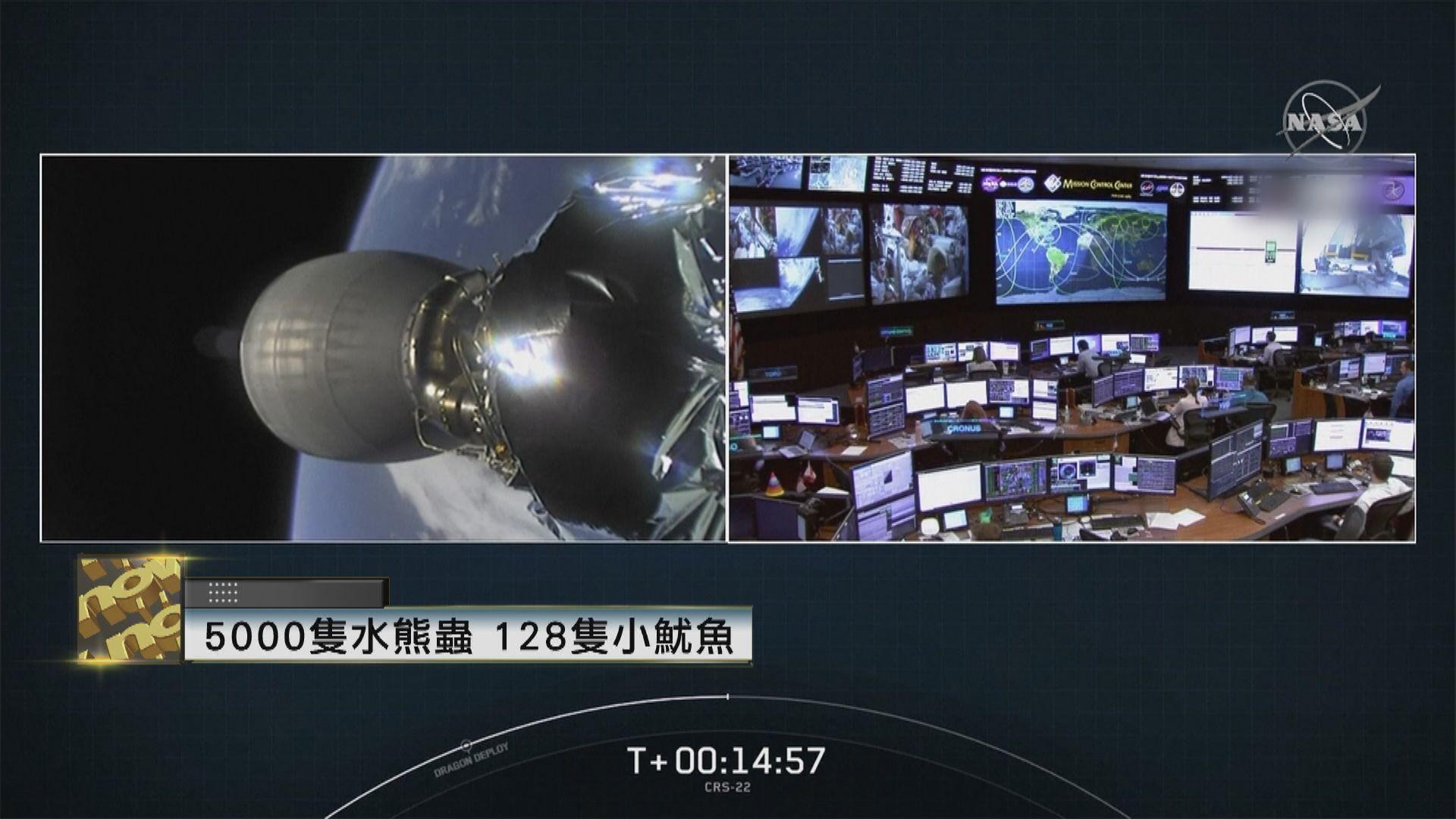 SpaceX送兩種生物上太空  了解對太空環境反應