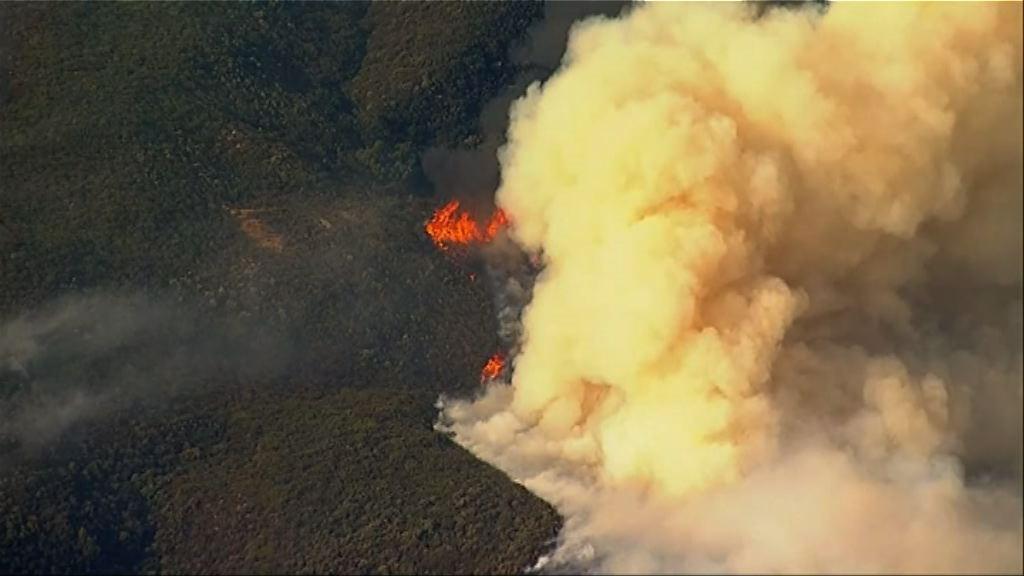美國南加州山火 文圖拉縣僅一成半火勢受控